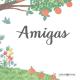 AMIGAS